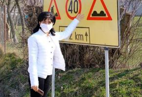 Statui cu Doina indicand marcajul rutier vor fi amplasate peste tot in judet!